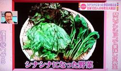 しなしな野菜の復活法